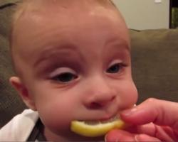 Bambini alle prime scoperte, ecco il video che sta facendo il giro del mondo
